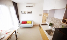 Pretty One Bedroom Apartment For Lease in Thao Dien District 2 HCMC