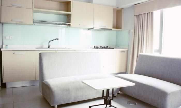 Beautiful Designed  Apartment For Rent in District 1 HCM City