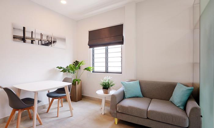 Sunshine One Bedroom Apartment For Rent in District 1 Ho Chi Minh City