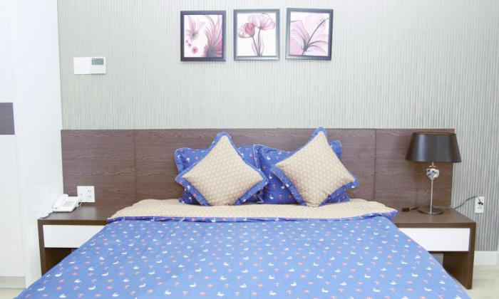 Sunny Serviced Apartment For Frent in District 1 Saigon