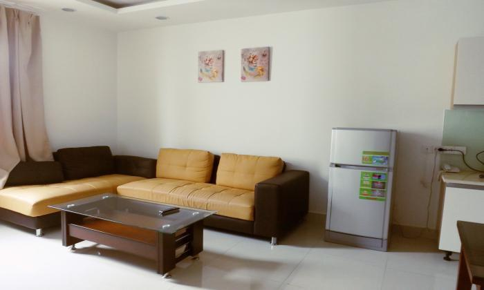 Very Nice Serviced Apartment For Rent, Thao Dien Ward Ho Chi Minh city