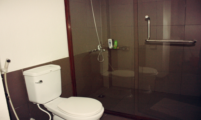 Nice Serviced Apartment In Center District 1, Ho Chi Minh City